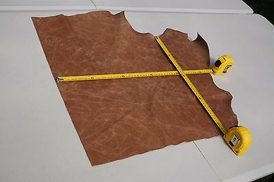 Two tone Brown Cowhide piece/off-cut  50 x 43cm  Semi aniline Cow hide leather