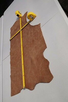 Two tone Brown Cowhide piece/off-cut  78 x 25cm  Semi aniline Cow hide leather