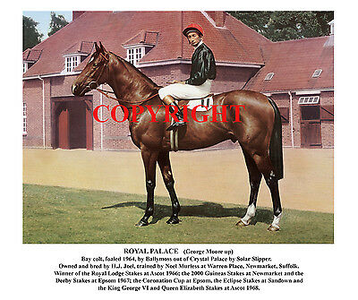 ROYAL PALACE and George Moore: 1967 Derby winner 10x8 colour, fully captioned