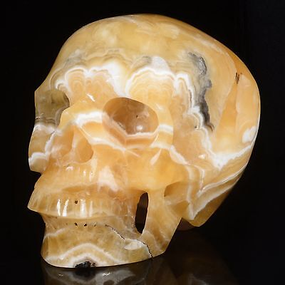 """5.94""""Natural Yellow Calcite Hand Carved Smiling Skull,Collectibles #22S75"""