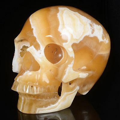 """5.94""""Natural Yellow Calcite Hand Carved Smiling Skull,Collectibles #22S74"""