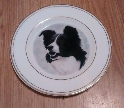 "6 1/2"" Border Collie Plate"