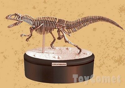 Acrocanthosaurus Dino Dinosaur Skeleton Fossil 4D 3D Puzzle Model Toy