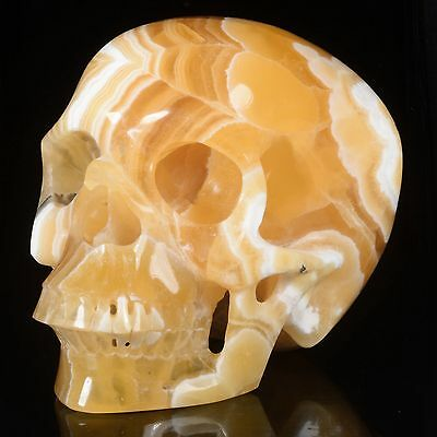 """6.02""""Natural Yellow Calcite Hand Carved Smiling Skull,Collectible#22S78"""