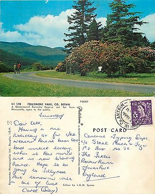 s06845 Tollymore Park, Down, Northern Ireland postcard posted 1968 stamp