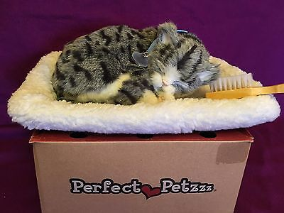 Perfect Pet Petzzz Breathing Grey Tabby Bundle Cat Bed Kitty Blue Collar Tag box