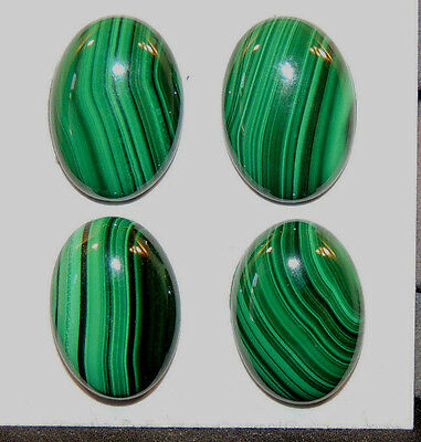 Malachite 13x18mm Cabochons with 5mm dome Set of 4 from Africa (11725)