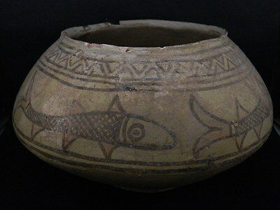 "Ancient Indus Valley Huge Size Teracota Painted Pot With Fishes C.2500 Bc""t15662"