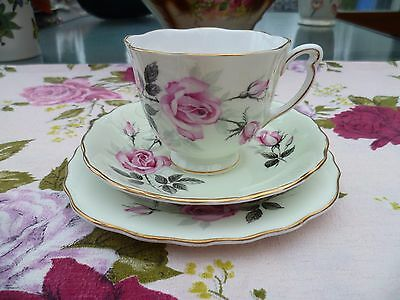 Vintage Colclough English China Trio Tea Cup Saucer Pastel Green & Pink Rose
