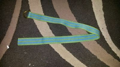 Boys green and blue striped belt