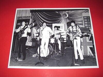 THE WHO  10x8 inch lab-printed photo P/8296