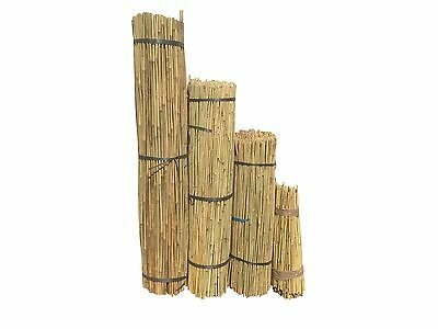 2FT 3FT 4FT BAMBOO CANES NEW GARDEN PLANT SUPPORT STICKS  8-10mm STRONG