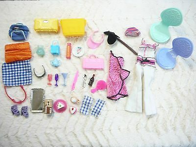 Barbie Doll Picnic Accessories + Clothing Cups Plates Food Ect