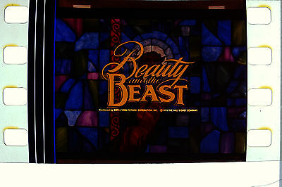 DISNEY'S BEAUTY & THE BEAST Film Cell Lot of 20 35mm card movie DVD book poster