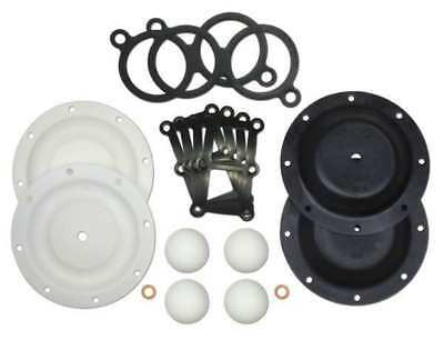 Repair Kit,PTFE,Fluid,For 1/2 In Pump SANDPIPER 476.202.654