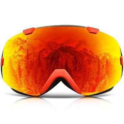 IceHacker Ski Goggles with Detachable Lens and Wide Angle Double Lens Anti-fog