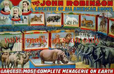 c1900 John Robinson Circus Poster~Complete Circus Menagerie~NEW Lge Note Cards