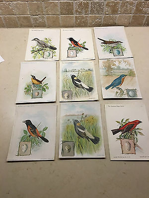 The American Singer Series Bird Cards By Singer Sewing Machine Co. Vintage 1898