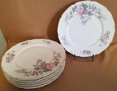 12532 by Heinrich/H & C Co - 2 Dinner Plates