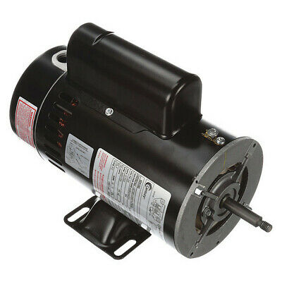 Pool and Spa Pump Motor, Century, SDS1252