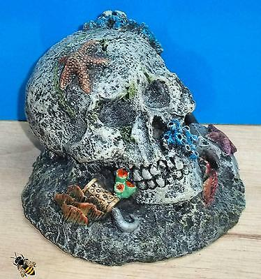 Aquarium Ornament Skull Coral Rock Decoration Fish Bowl Tank Goldfish New