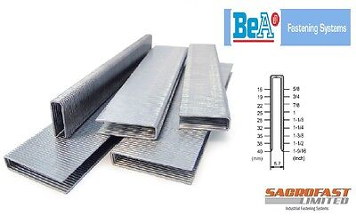 BeA 90 SERIES STAPLES
