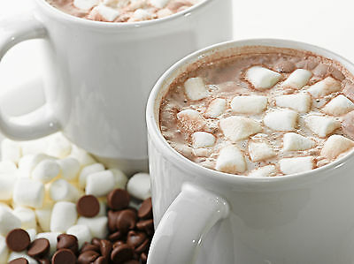 Hot Chocolate Dreams Soap / Candle Fragrance Oil 1-16 Ounce **Free Shipping**