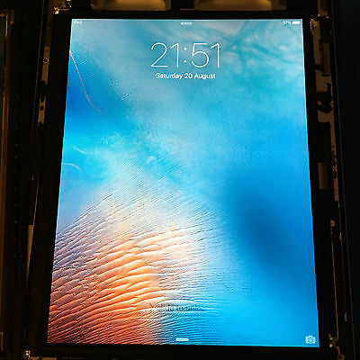 Apple iPad 2 LCD Display Screen Panel Replacement SMALL WHITE SPOTS ref134