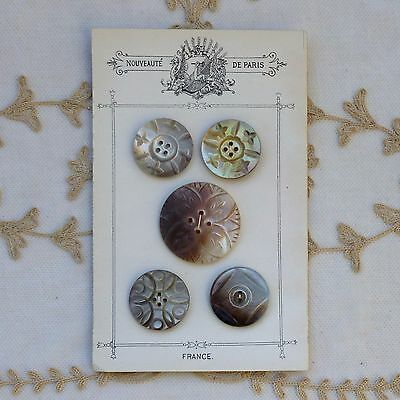 Antique Carved MOP Buttons on French Display card