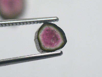 55ct Brazilian Tourmaline Slices - natural loose gemstone slice SEE VIDEO !