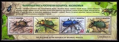 BELARUS 2016 SHEET INSECTS GROUND BEETLES 4v SET RED BOOK of BELARUS