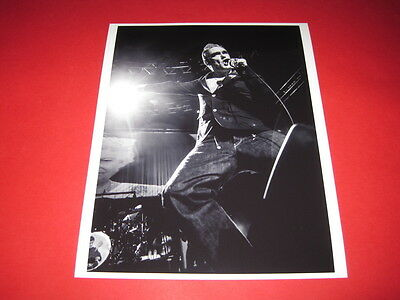 MORRISSEY THE SMITHS  10x8 inch lab-printed photo P/8250