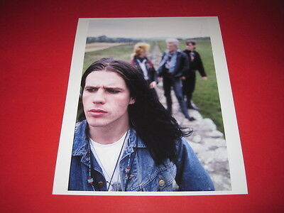 THE CULT  10x8 inch lab-printed photo P/8294
