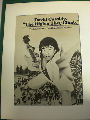 """DAVID CASSIDY 8x10 Poster 70's for """"Higher they Climb"""" ( first solo album)"""