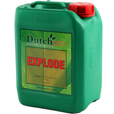 Dutch Pro Explode 1 & 5L Hydroponic Bloom Stimulator PK Booster
