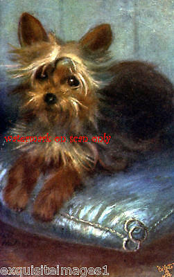 Antique Art~Yorkshire Terrier Dog~ NEW Lge.Note Cards