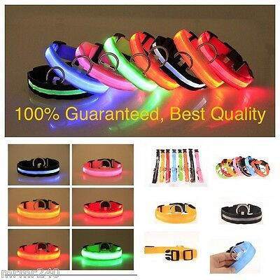 LED Nylon Adjustable Pet Dog Collar Light up or Flash For Night Safety US SELLER