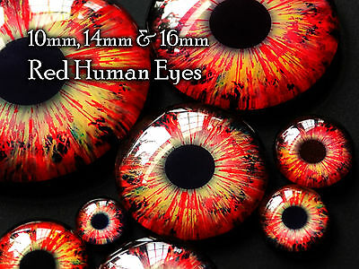 Taxidermy Glass Dragon, Doll, Monster Eyes, Red 10mm, 14mm, 16mm