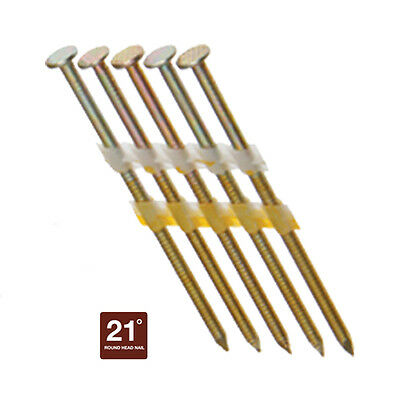 "3"" Round Head Framing Nails, Stainless Steel, 21° Plastic Strip, 1000 Nails"