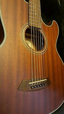 ibanez acoustic guitar / Pickup included and hard case
