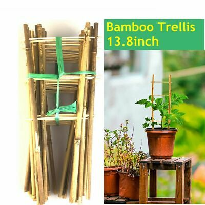 12pcs Natural Color Bamboo Trellis 14 inches Tall