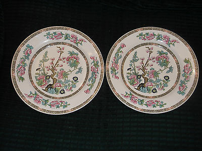 """Two Nelson Pottery INDIAN TREE 9"""" Dinner Plates, January 1966"""