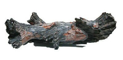 Decor Forest Wurzel No 10 Aquarium Collection 30x11x12 cm von Aquatic Nature