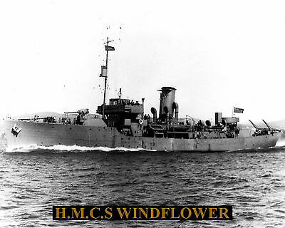 Royal Canadian Navy Corvette Hmcs Windflower K155 Photo With Bonus Stat Sheet