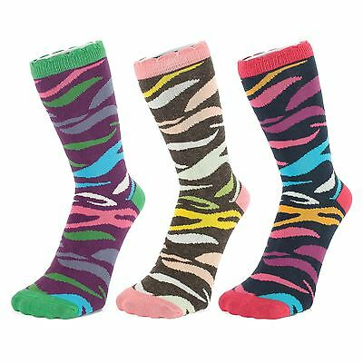 Ankle Socks with Multi coloured Zebra Pattern (Size: 4-7)
