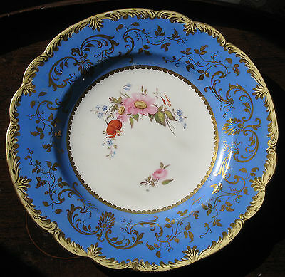Antique : A 19th century hand painted Cabinet Plate decorated with flora