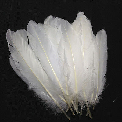 100pcs Wholesale White Goose Feathers 6-8inches / 15-20cm Craft Home Decor new