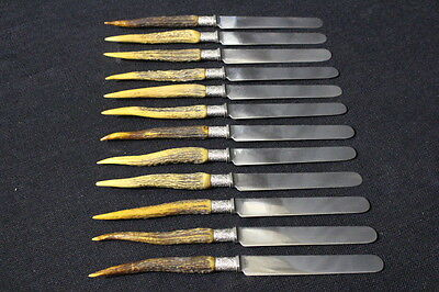 Set of 12 Antique Black Forest Style Dinner Knives With Real Antler Handles