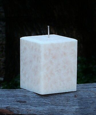 200hr DETOX IT! Peppermint, Basil, Lavender, Thyme, Lime Scented Square CANDLE