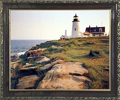 Pemaquid Lighthouse Ocean Cliff Nautical Picture Wall Decor Mahogany Framed Art